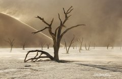 Fine art photograph of sandstorm in Deadvlei in Namibia desert