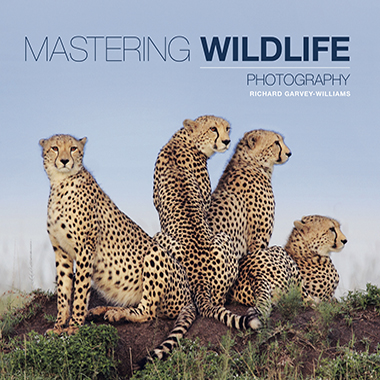Wildlife Photography Book