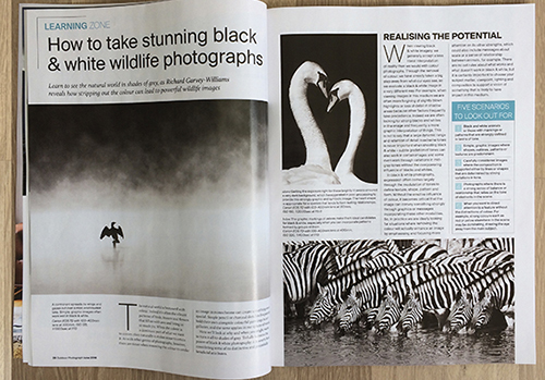 Photography mag feature