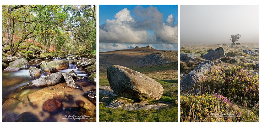 Photos showing variety of moorland scenes